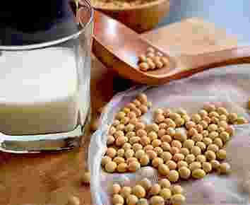 豆奶大豆蛋白提取分离